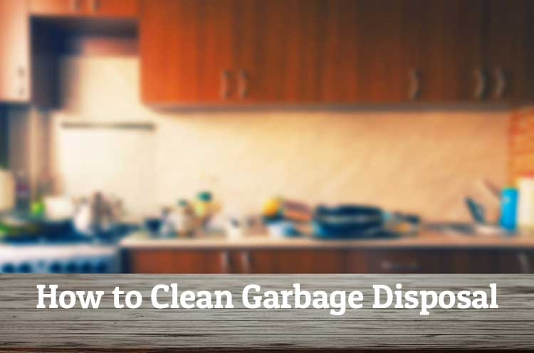 How to Clean Garbage Disposal Image
